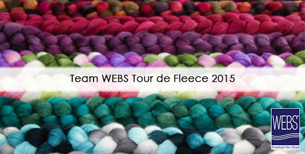 Team WEBS Tour de Fleece spinning challenge, read more on the WEBS Blog - blog.yarn.com