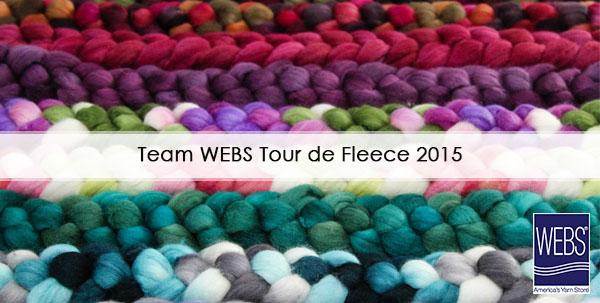 Team WEBS Tour de Fleece spinning challenge, read more on the WEBS Blog - blog.yarn.com