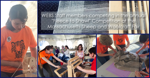 """WEBS staff members, """"Team Ply of the Tiger"""" Compete in the Fleece to Shawl competition, more on the WEBS Blog - blog.yarn.com"""